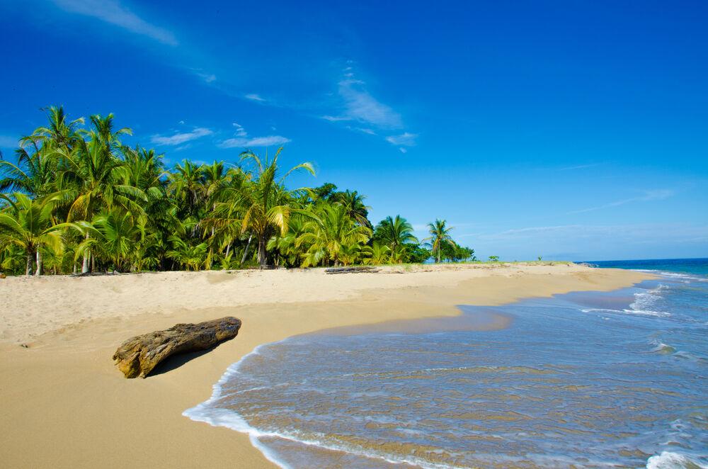 Kosta-Rika-Brezilya