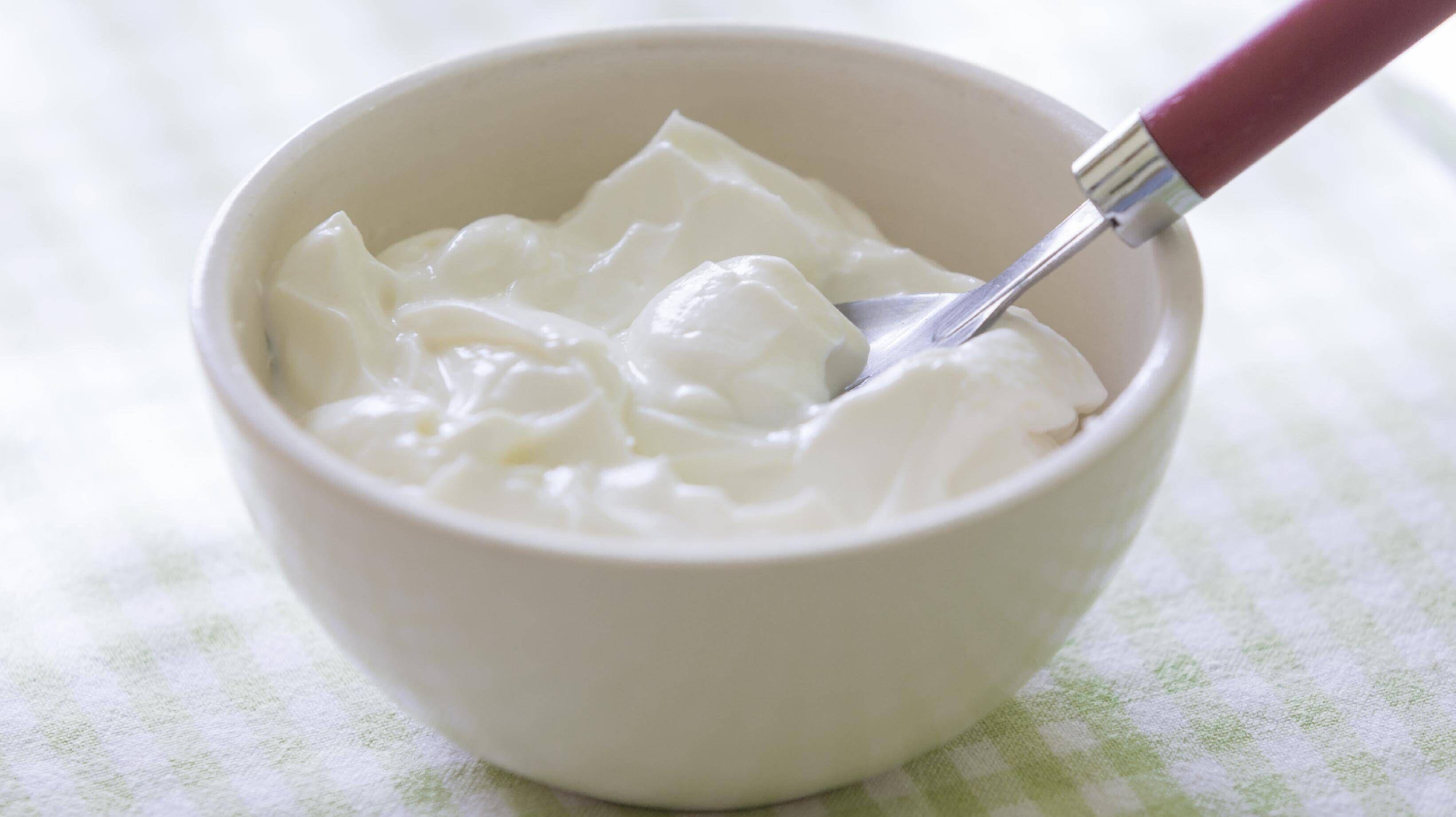 tuzlu-yogurt