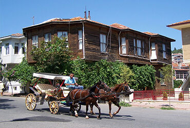 The Apple of Turkey's Eyes: İstanbul and Its Islands