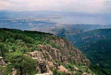 Yeşilin Binbir Tonuna Doyacaksınız: Kaz Dağları